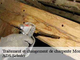 Traitement de charpente  62170