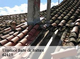 Réparation fuite de toiture à Dourges tél: 03.59.28.30.83